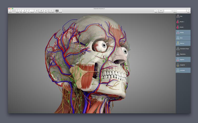 Essential Anatomy 5.0.2 强大的3D解剖图学习参考工具