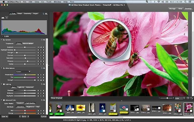 ACDSee Pro 3.7.201 经典老牌的图片管理工具