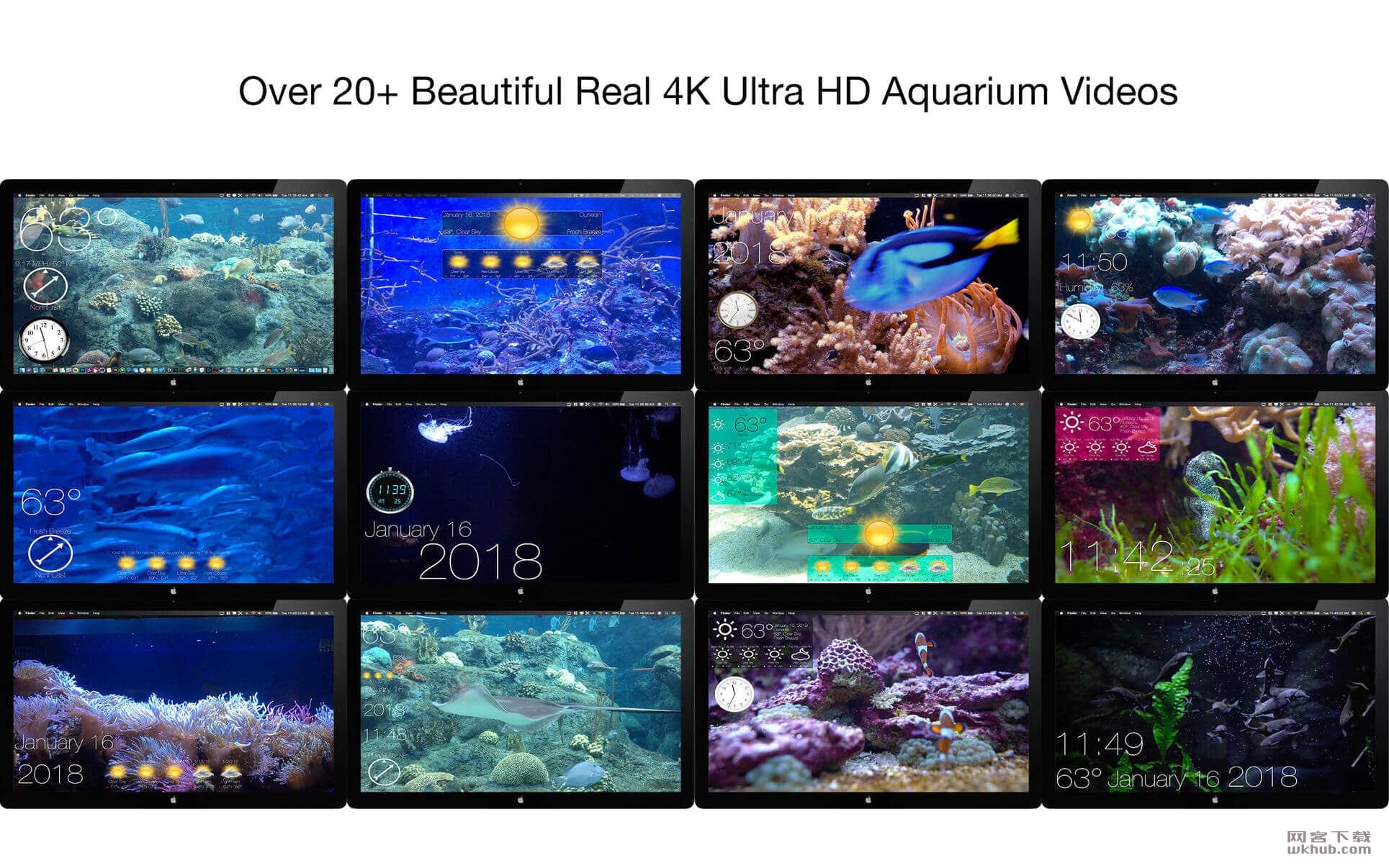 Aquarium 4K 1.0.3 4K动态壁纸应用