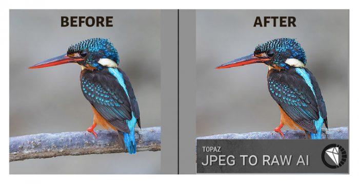 Topaz JPEG to RAW AI 2.2.1 压缩失真和颜色细节修复工具
