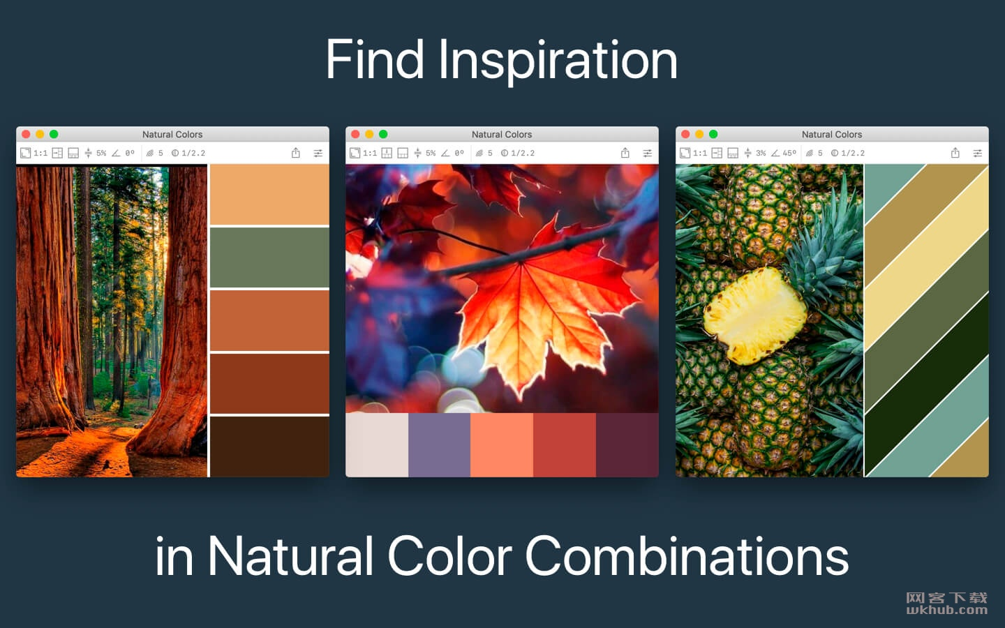 Color Palette from Image Pro 2.0.1 调色板编辑器